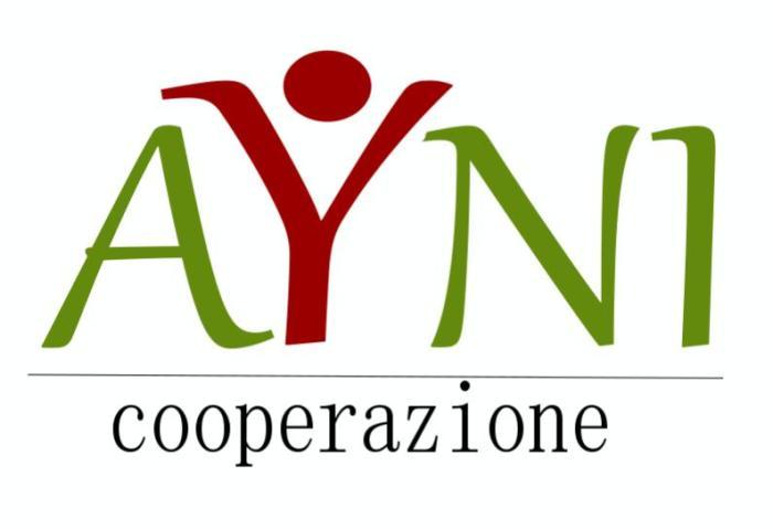 ayni-logo